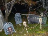 RINGGOLD GRAVEYARD 2008 ELECTRIC CHAIR 276